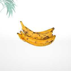 bananes plantains antillais