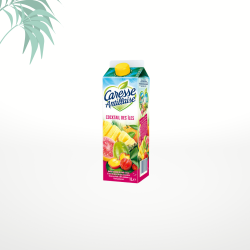 Jus cocktail des îles 1L Caresse Antillaise